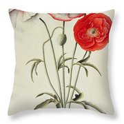 Poppies Corn Throw Pillow by Georg Dionysius Ehret