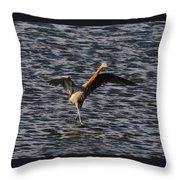 Prancing Heron Throw Pillow by David Lee Thompson