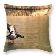 Preflight Check Throw Pillow by LeeAnn McLaneGoetz McLaneGoetzStudioLLCcom