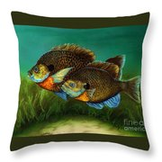 Pretty Little Panfish Throw Pillow by Kathleen Kelly Thompson