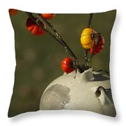 Pumpkin On A Stick In An Old Primitive Moonshine Jug Throw Pillow by Kathy Clark