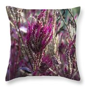 Purple Haze Throw Pillow by Bill Cannon