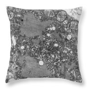 Rabies Virus Throw Pillow by Science Source