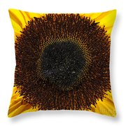Radiance Throw Pillow by Luke Moore