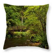 Rain Forest Bridge Throw Pillow by Adam Jewell