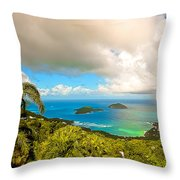 Rain In The Tropics Throw Pillow by Keith Allen