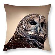 Rain Owl Throw Pillow by LeeAnn McLaneGoetz McLaneGoetzStudioLLCcom