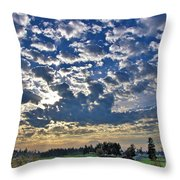 Rainier Country Throw Pillow by Sean Griffin