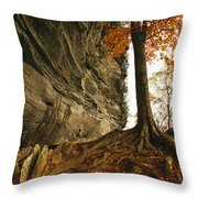 Raven Rock And Autumn Colored Beech Throw Pillow by Raymond Gehman