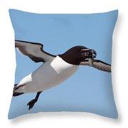 Razorbill In Flight Throw Pillow by Bruce J Robinson