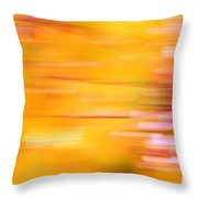 Rectangulism - S07a Throw Pillow by Variance Collections