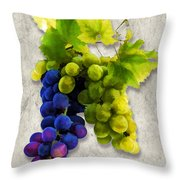 Red And White Grapes Throw Pillow by Elaine Plesser