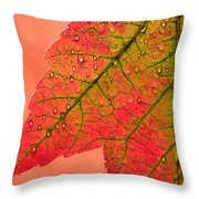 Red Autumn Throw Pillow by Carol Leigh