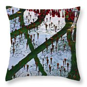 Red Crystal Refletcion Throw Pillow by Garry Gay