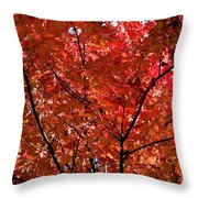 Red Leaves Black Branches Throw Pillow by Rich Franco