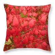 Red Leaves Iv Throw Pillow by Alys Caviness-Gober