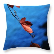 Red Maple Leaves Throw Pillow by Paul Ge