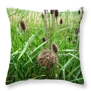 Red-winged Blackbird Nest Throw Pillow by J McCombie