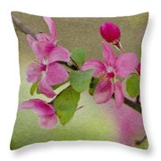Redbud Branch Throw Pillow by Jeff Kolker