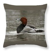 Redhead Duck Flapping Its Wings Throw Pillow by Inspired Nature Photography Fine Art Photography