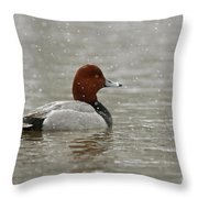 Redhead Duck In Winter Snow Storm Throw Pillow by Inspired Nature Photography Fine Art Photography