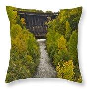 Redridge Steel Dam 7844 Throw Pillow by Michael Peychich