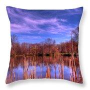 Reeds Throw Pillow by Paul Ward