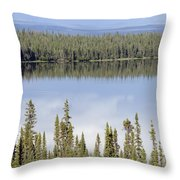 Reflection In Willow Lake Near Copper Throw Pillow by Rich Reid