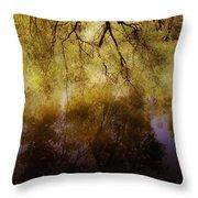 Reflection Throw Pillow by Joana Kruse