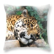 Relaxing 2 Throw Pillow by Ernie Echols