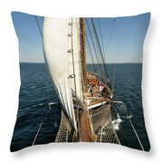 Riding the Breeze Throw Pillow by Robert Lacy