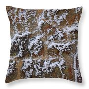 Rime-covered Brick And Stone Wall Throw Pillow by Mark Taylor