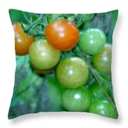 Ripen On The Vine Throw Pillow by Barbara S Nickerson