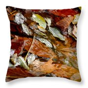River Leaves Throw Pillow by LeeAnn McLaneGoetz McLaneGoetzStudioLLCcom