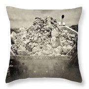 Rock Throw Pillow by Patrick M Lynch