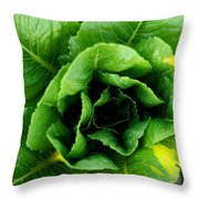 Romaine Throw Pillow by Angela Rath