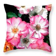 Rose 133 Throw Pillow by Pamela Cooper