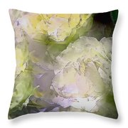 Rose 151 Throw Pillow by Pamela Cooper