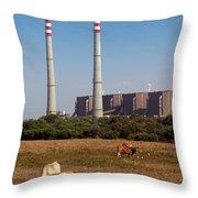 Rural Power Throw Pillow by Carlos Caetano
