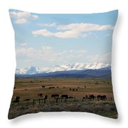 Rural Wyoming - On The Way To Jackson Hole Throw Pillow by Susanne Van Hulst