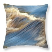 Rushing Waters Throw Pillow by Carolyn Marshall