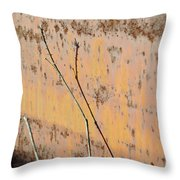 Rustic Landscape Throw Pillow by Luke Moore