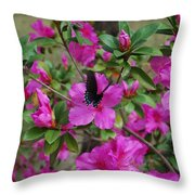 Safe Landing Throw Pillow by Judy Hall-Folde