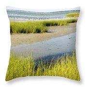 Salt Marsh Habitat With Flock Of Birds Throw Pillow by Tim Laman
