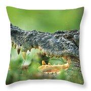 Saltwater Crocodile Crocodylus Porosus Throw Pillow by Cyril Ruoso