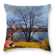 Sanctuary . 7d12636 Throw Pillow by Wingsdomain Art and Photography