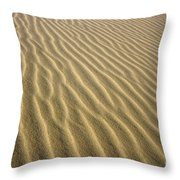 Sandhills Throw Pillow by MotHaiBaPhoto Prints