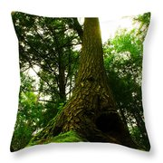 Screaming Tree Throw Pillow by Kamil Swiatek