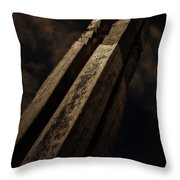 Sculpture By Moonlight Throw Pillow by Meirion Matthias