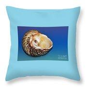 Seashell Wall Art 2 Throw Pillow by Kaye Menner